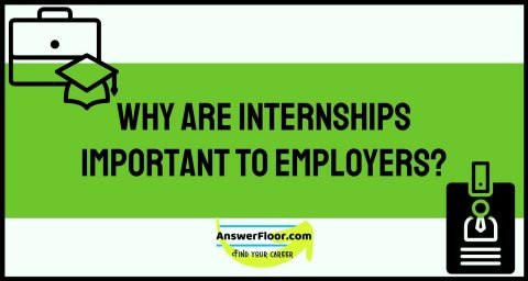 The importance of internships: Top Benefits of Having an Internship Program