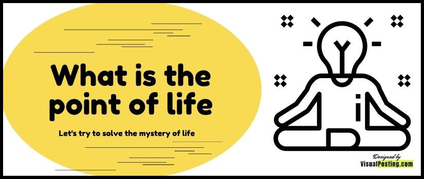 What is the point of life: Let's try to solve the mystery of life