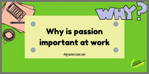 Why-is-passion-important-at-work-.png